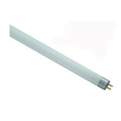 Fluorescent 8 watt Tube