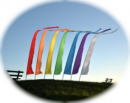 Festival Banners Pole & Flag Pack Red