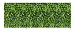 Windbreak ~ Laurel hedge design